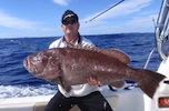 Moreton Island Fishing Charters Bar Cod